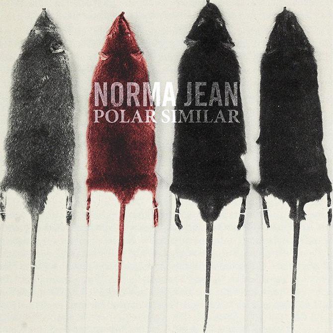 Polar Similar newnoisemagazinecomwpcontentuploads201609No