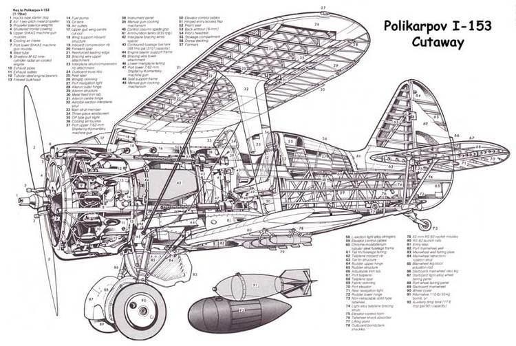 Polikarpov I-153 Polikarpov I153 Aircraft