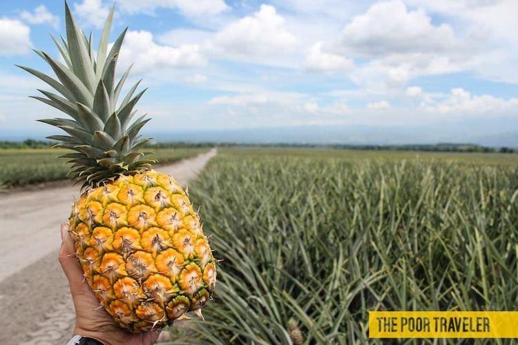 Polomolok, South Cotabato Beautiful Landscapes of Polomolok, South Cotabato