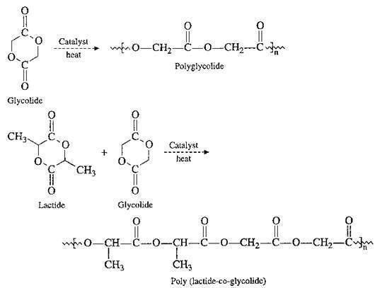 Polyglycolide Polymer homework help The giver homework help