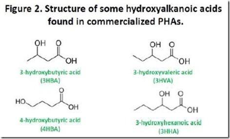 Polyhydroxyalkanoates Polyhydroxyalkanoates Nature39s Polyester Polymer Innovation Blog