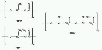 Polyhydroxyalkanoates Polyhydroxyalkanoates Wikipedia