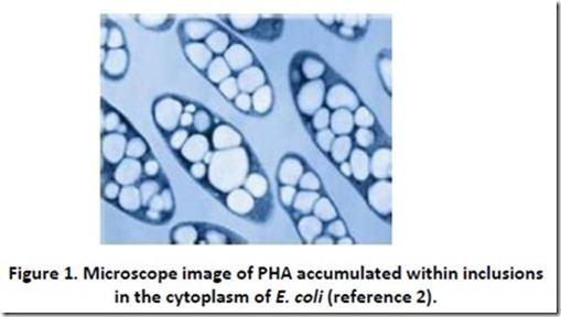 Polyhydroxyalkanoates httpspolymerinnovationblogcomwpcontentuploa