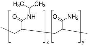 Poly(N-isopropylacrylamide) PolyNisopropylacrylamidecoacrylamide acrylamide 15 mol