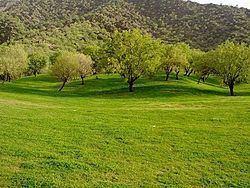Pomegranate valley httpsuploadwikimediaorgwikipediacommonsthu