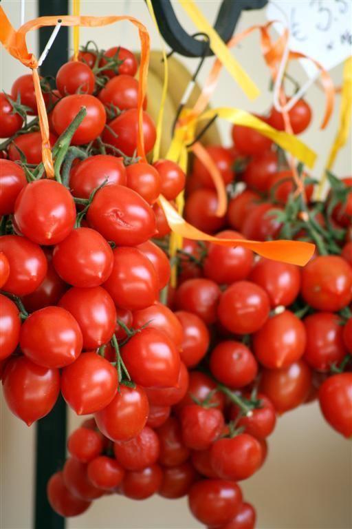 Pomodorino del Piennolo del Vesuvio Pomodorino del Piennolo del Vesuvio Wikipedia