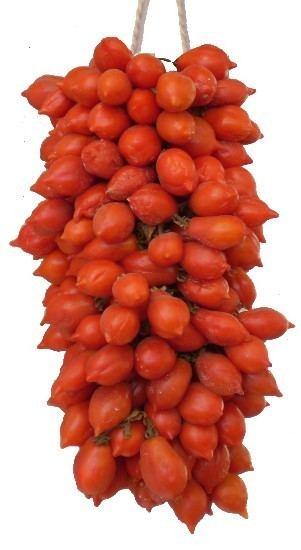 Pomodorino del Piennolo del Vesuvio Pomodoro del Piennolo Rossovesuvio Pomodorino del piennolo del