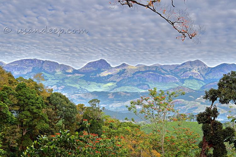 Poopara Sandeep 39s World gtgt View of Munnar hills from Poopara