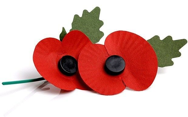 Poppy Poppy etiquette Are you wearing yours right Telegraph