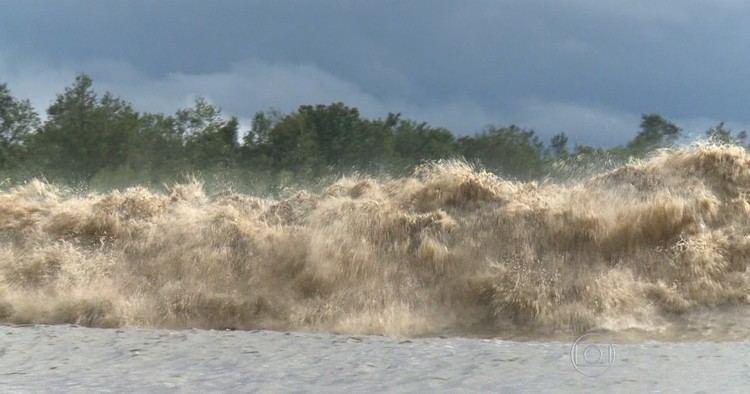 Pororoca G1 Fim da pororoca em rio do Amap irreversvel avaliam