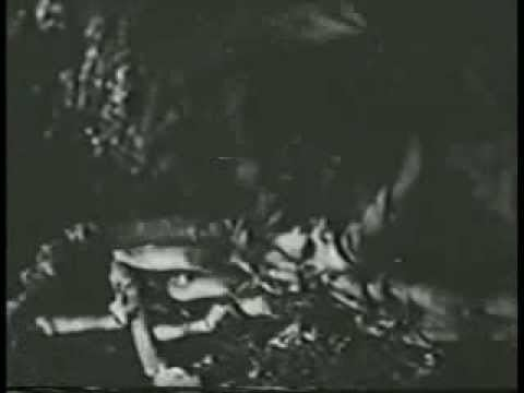 Port Sinister Port Sinister Beast Of Paradise Isle Harold Daniels EEUU 1953