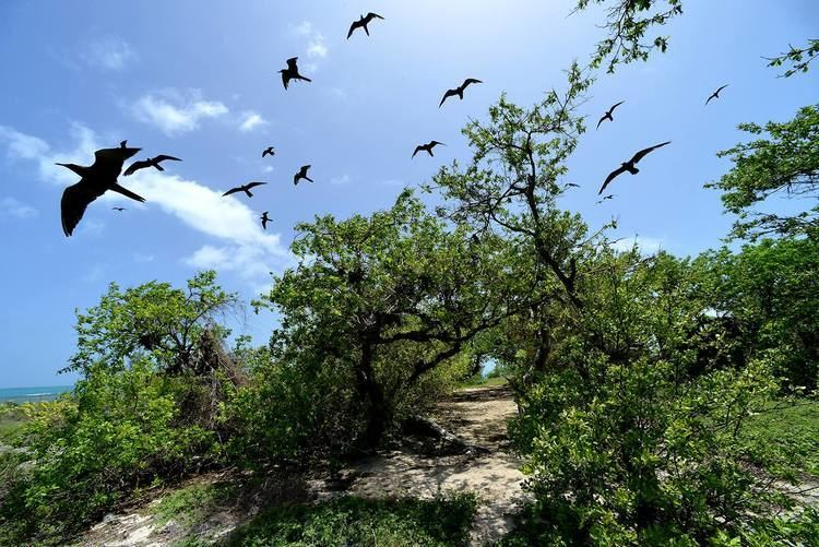 Portland Bight Protected Area Let39s Save Jamaica39s Portland Bight Protected Area Petchary39s Blog