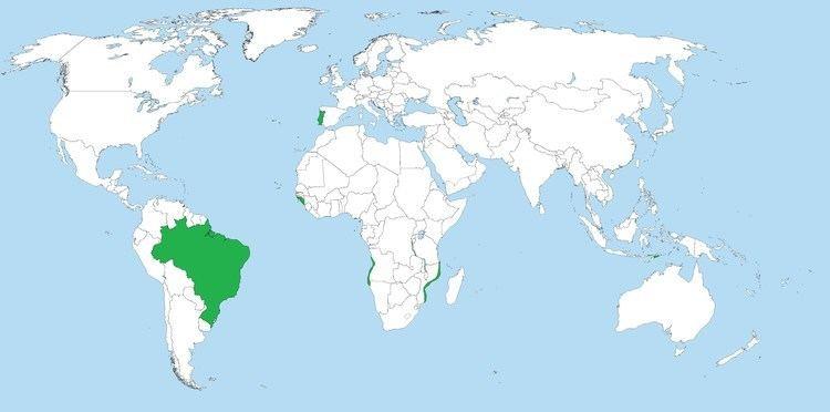Portuguese Empire Rise and Fall of the Portuguese Empire YouTube