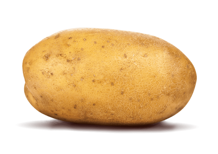 Potato Potato Production