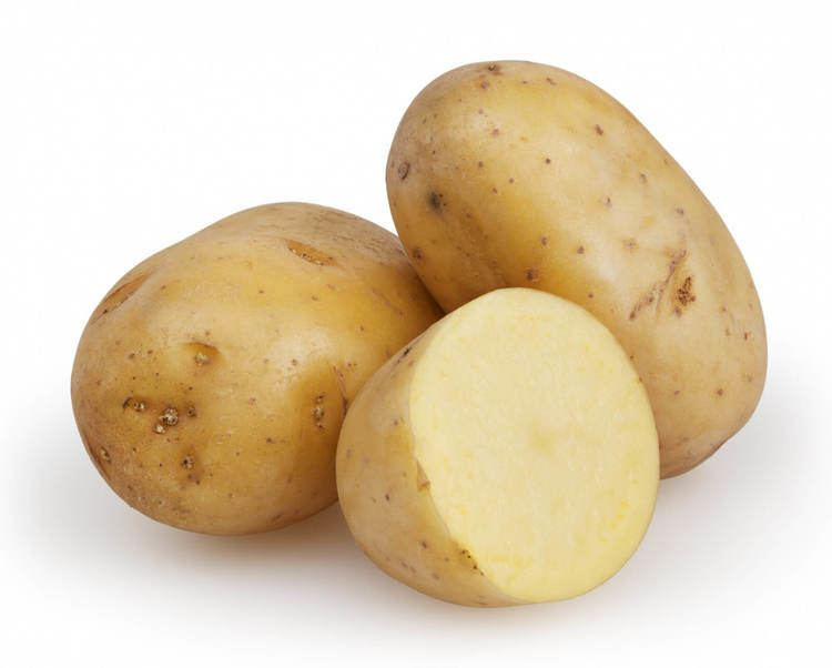 Potato wwwpatrongroupscomRussetPotatoescutjpg