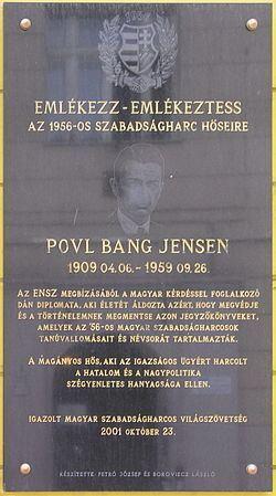 Povl Bang-Jensen Povl BangJensen Wikipdia