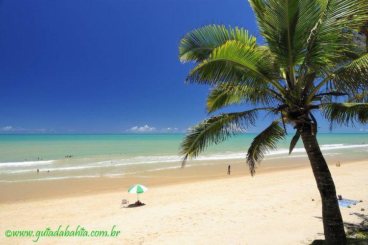 Prado Bahia fonte: alchetron.com