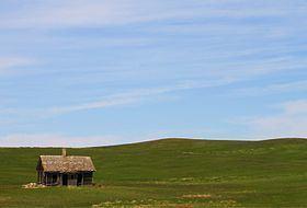 Prairie Prairie Wikipedia