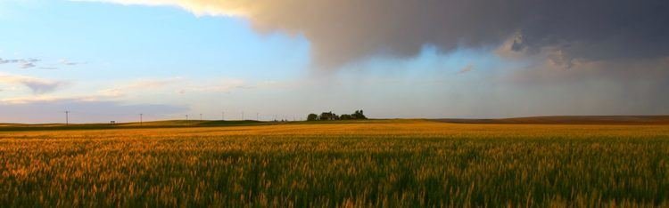 Prairie Prairie Climate Centre From Risk to Resilience
