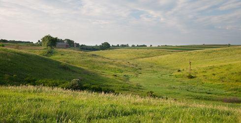 Prairie Barneveld Prairie The Nature Conservancy