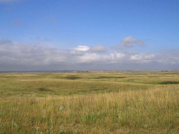 Prairie Shortgrass Prairie or Plains Life Zone General Information