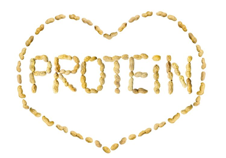 Protein Protein Supplementation Sports Dietitians Australia SDA