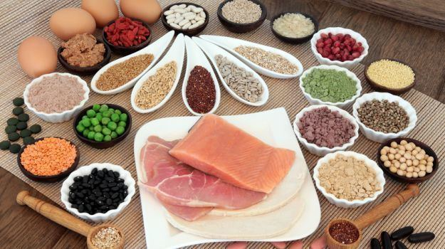 Protein Why Protein is the Most Important Nutrient Your Body Needs Daily