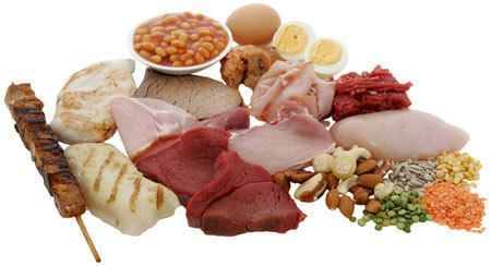 Protein (nutrient) Protein Nutrition Kids Diet Health Vitamins and Minerals