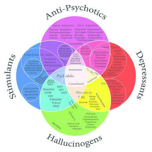 Psychoactive drug Psychoactive Drug Herb Museum