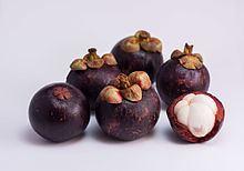 Purple mangosteen Purple mangosteen Wikipedia