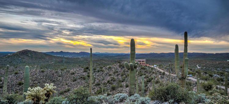 Queen Valley, Arizona httpsthumbstruliacdncompicturesthumbs6ps