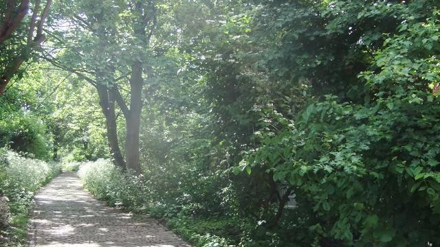 Railway Fields Railway Fields Local Nature Reserve Open Space visitlondoncom