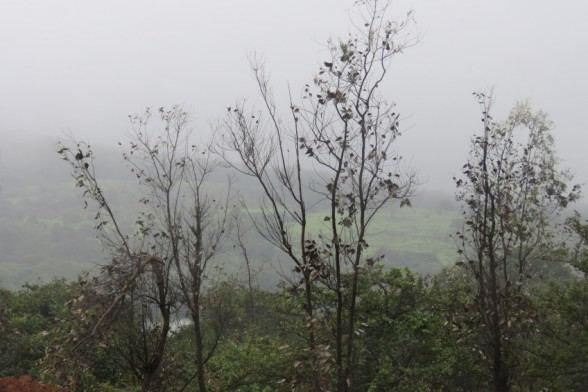 Rampurhat Beautiful Landscapes of Rampurhat