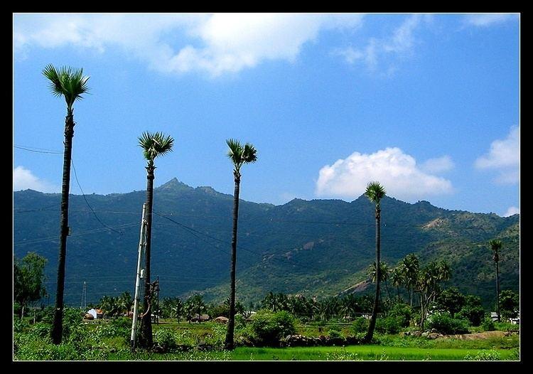 Rasipuram Beautiful Landscapes of Rasipuram
