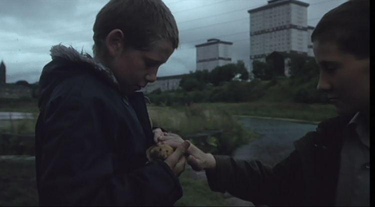 Ratcatcher (film) Ratcatcher Glasgow on Film