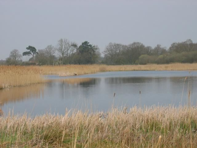 Redgrave and Lopham Fen