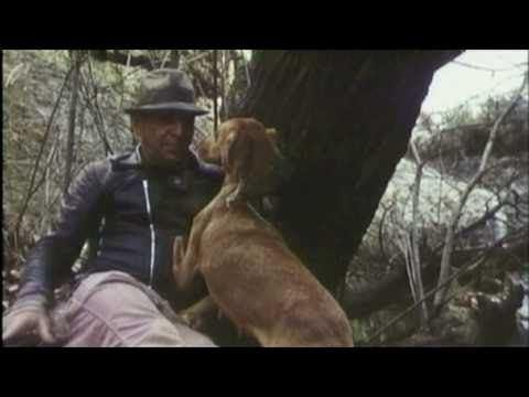 Redneck (film) REDNECK 1973 Telly Savalas sings to then shoots a 3 legged dog