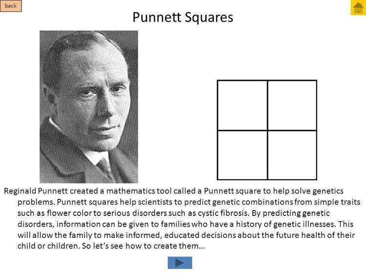 Reginald Punnett Presentation quotGenetics Tutorial Place your keyboard aside
