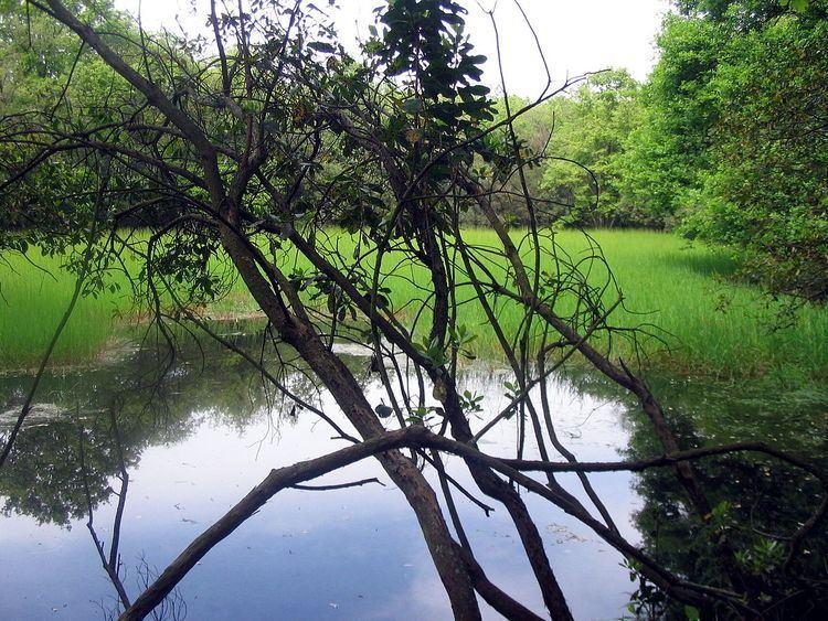 Regional Park of Decima-Malafede
