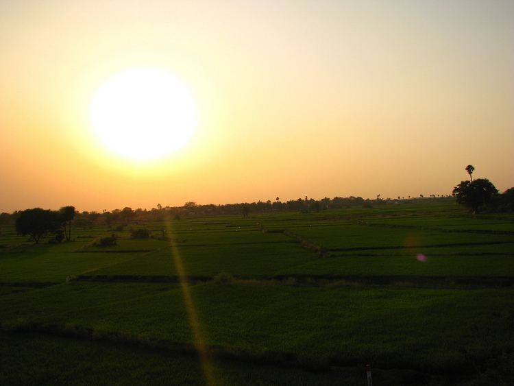 Repalle Beautiful Landscapes of Repalle