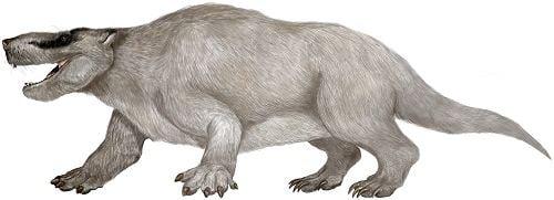 Repenomamus Repenomamus Repenomamus Mesozoic Mammals Pinterest