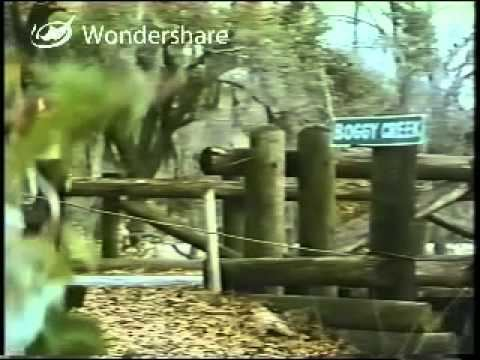 Return to Boggy Creek Return To Boggy Creek 1977 Part 1 YouTube