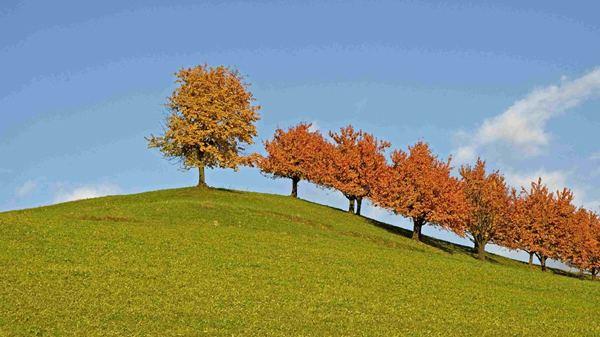 Rheinfelden Beautiful Landscapes of Rheinfelden