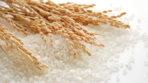 Rice White Rice Brown Rice Or Red Rice Which One is the Healthiest