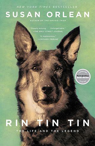 Rin Tin Tin Rin Tin Tin The Life and the Legend a book by Susan Orlean