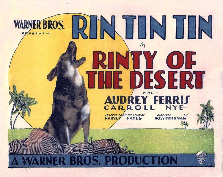 Rinty of the Desert FileRinty of the Desert lobby cardjpg Wikimedia Commons
