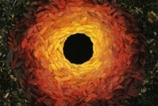 Rivers and Tides Rivers and Tides Andy Goldsworthy Working with Time Film Reviews
