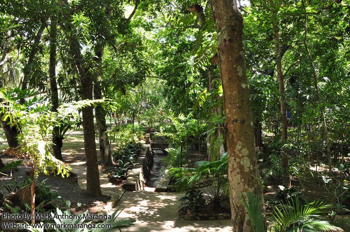 Rizal Beautiful Landscapes of Rizal