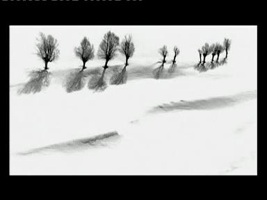 Roads of Kiarostami Roads of Kiarostami 2006 dAbbas Kiarostami Shangols