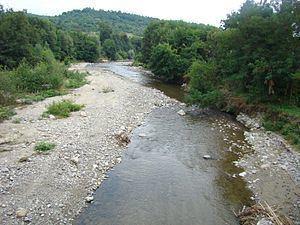 Robaia River (Vâlsan) httpsuploadwikimediaorgwikipediacommonsthu